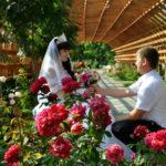 Свадьба фото Эльмира и Владимир-43